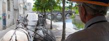 Niort Plage : Visite guidée de Niort en Calèche