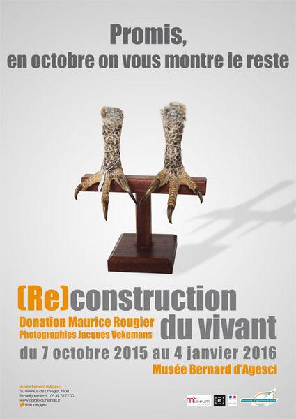 (Re)construction du vivant - Donation Maurice Rougier