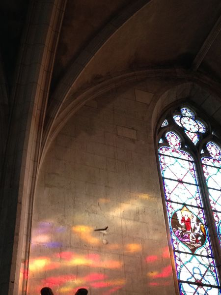 Visite de l'église Notre-Dame