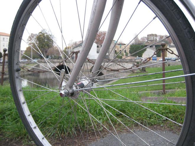 Visite guidée : Balade à vélo le long de l'eau