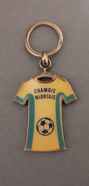 Expo : Les Chamois niortais