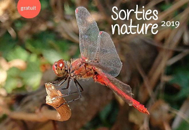 Sortie nature : découverte du Marais de Galuchet