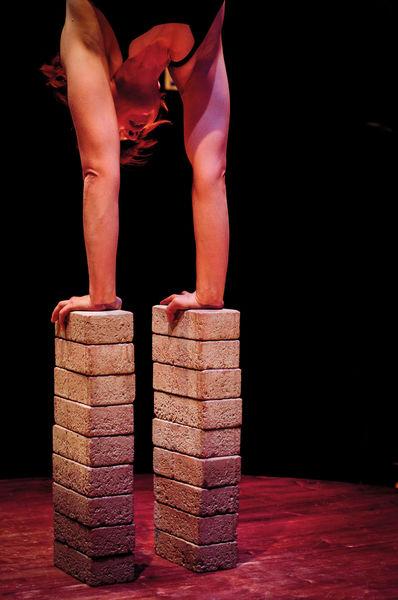 Cirque d'été : Attention fragile - Tania's Paradise
