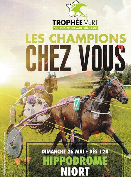 Courses hippiques : Le Trophée Vert