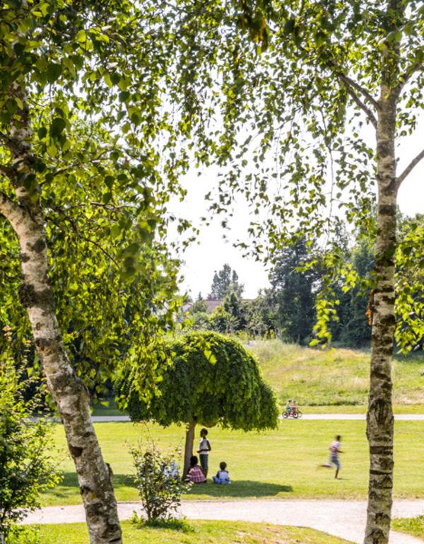 Le parc des Brizeaux - Photo Alex Giraud