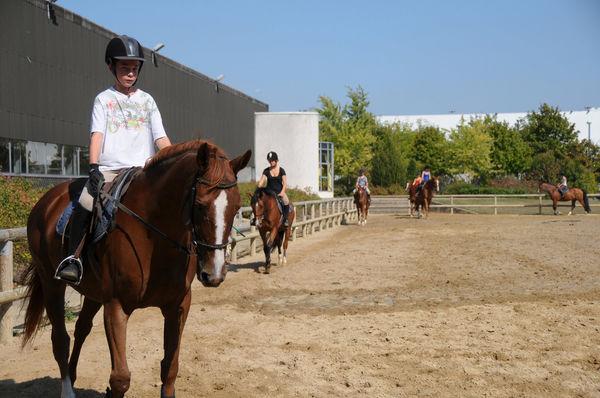 Centre equestre de Niort © B. Derbord