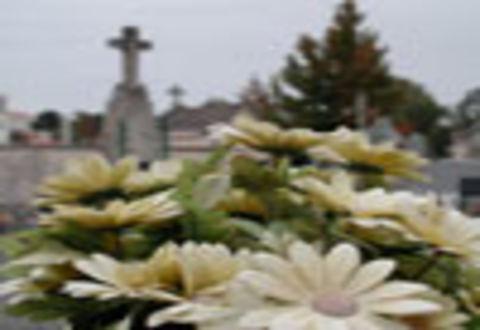 Illustration article : Toussaint - cimetières accessibles du 25 au 31 octobre 2008