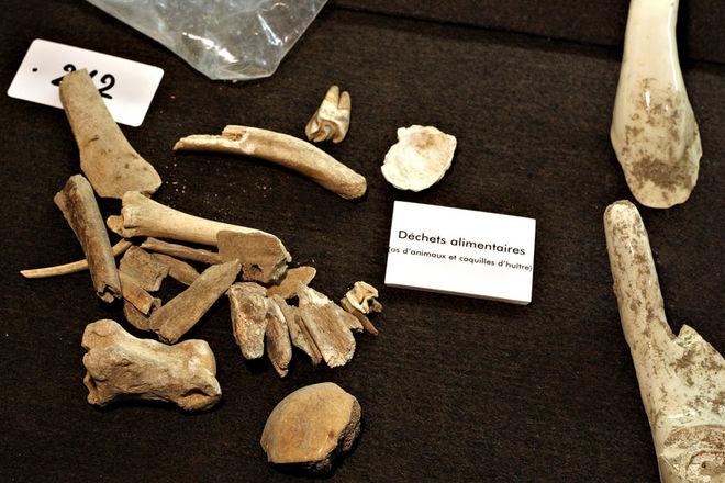 Les Vacances aux musées : Archéologue en herbe !