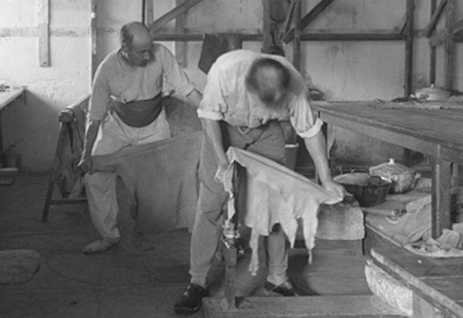 Dimanche au musée : Chamoiserie et ganterie à Niort