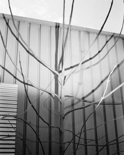 Exposition : Boinot, en vue(s) #2