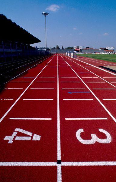Paris#2024 : des athlètes chinois à Niort