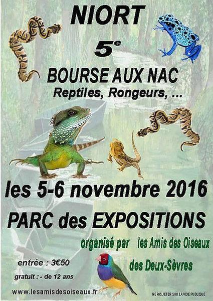 Bourse aux oiseaux et reptiles mairie de niort for Parc des expositions niort