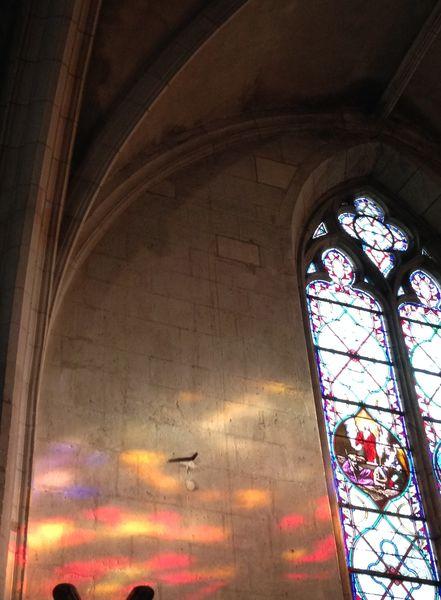 Visite guidée de l'église Notre-Dame de Niort
