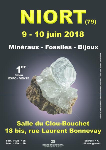 Salon : Minéraux, fossiles et bijoux