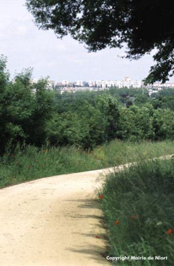 Photo du sentier - Parcours de la Tranchée