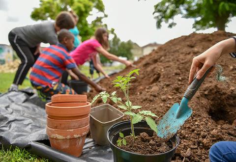 Illustration article : Un nouveau jardin au Pontreau