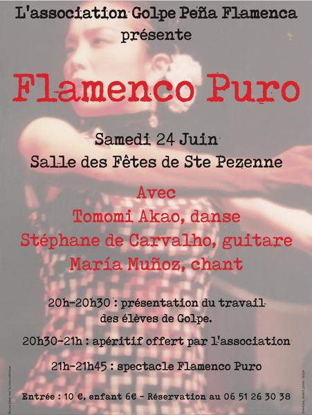 Spectacle : Flamenco puro