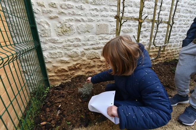 Amenagement d'un jardin Pedagogique