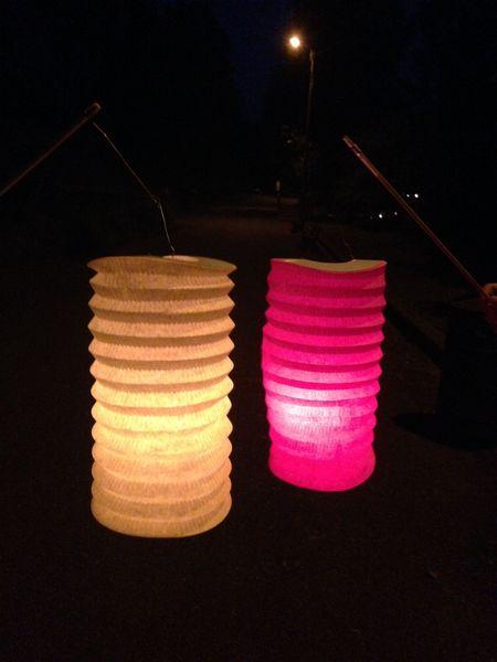 Visite guidée : balade aux lampions le long de la Sèvre