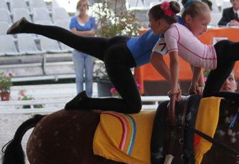 Stages équitation : Club hippique niortais