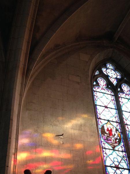 Visite guidée : La Nuit des églises