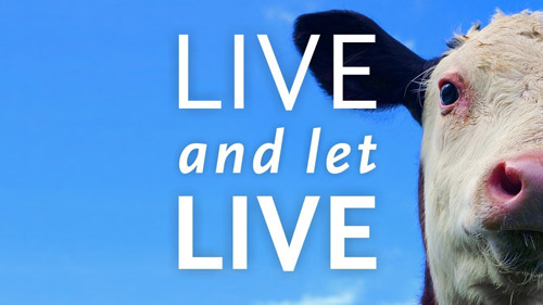 Projection : Live and let live