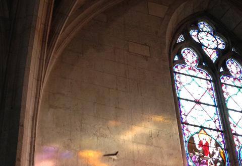 Visite guidée de l'église Notre Dame