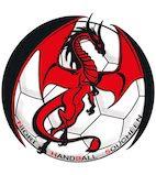 Sport : Championnat N3 Handball