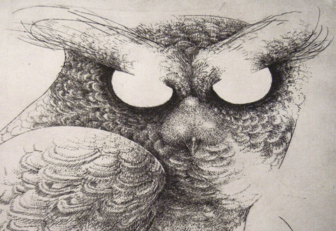 illustration de la manifestation Hitnes invité du festival Le 4ème Mur s'expose