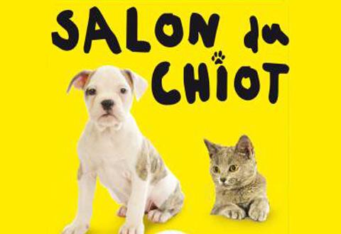 Salon du chiot mairie de niort for Salon du chiot nancy