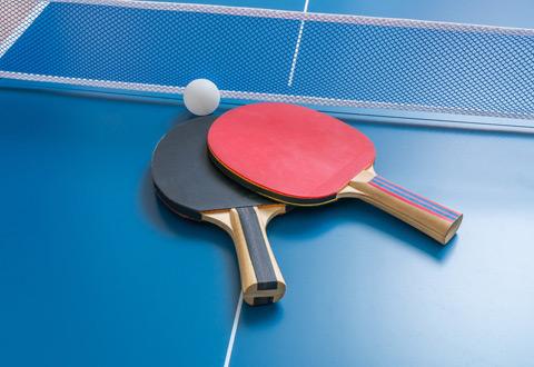 Tennis de table N1 Messieurs : Niort TT/Douai