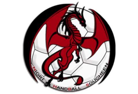 Handball Coupe de France : Niort HBS - Rezé